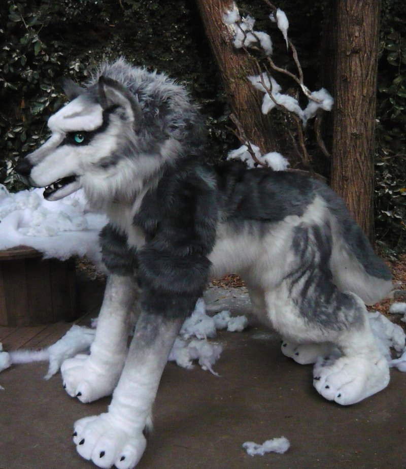 Quadsuit Wolf http://www.beastcub.com/apps/photos/photo?photoid=53252415